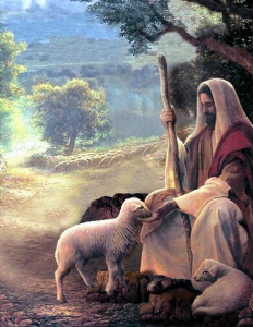 Jesus-Sheep-091