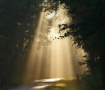 Light on a path