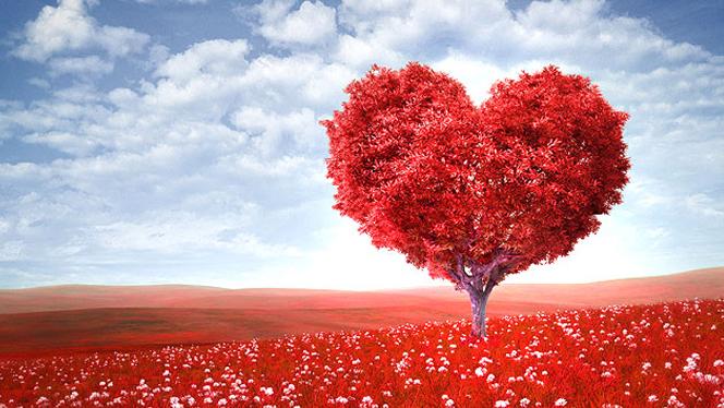 steadfast-love-of-god