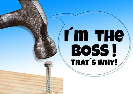 I'm-the-boss